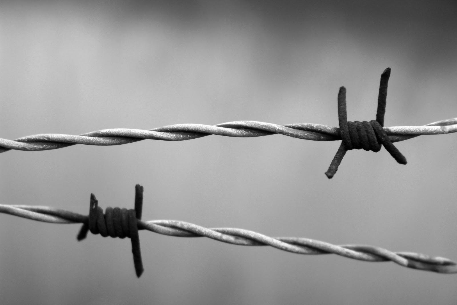 Lale Sokołow w powieści Heather Morris - Tatuażysta z Auschwitz, opinia na bywalcu