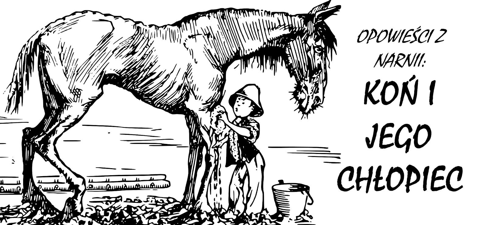 Opowieści z Narnii: Koń i jego chłopiec autorstwa C S Lewis'a.