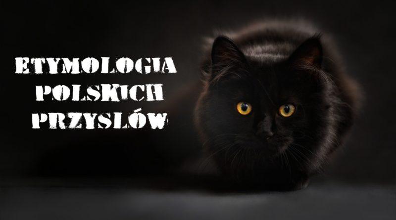 etymologia polskich przysłów, powiedzeń, mądrości ludowych
